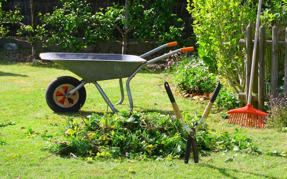 Grünschnitt in Garten